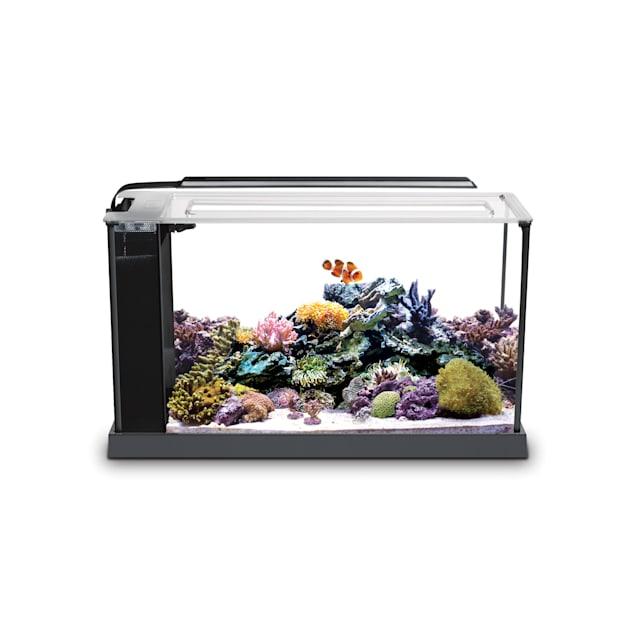 Fluval 5 Gallon EVO V Marine Aquarium Kit - Carousel image #1