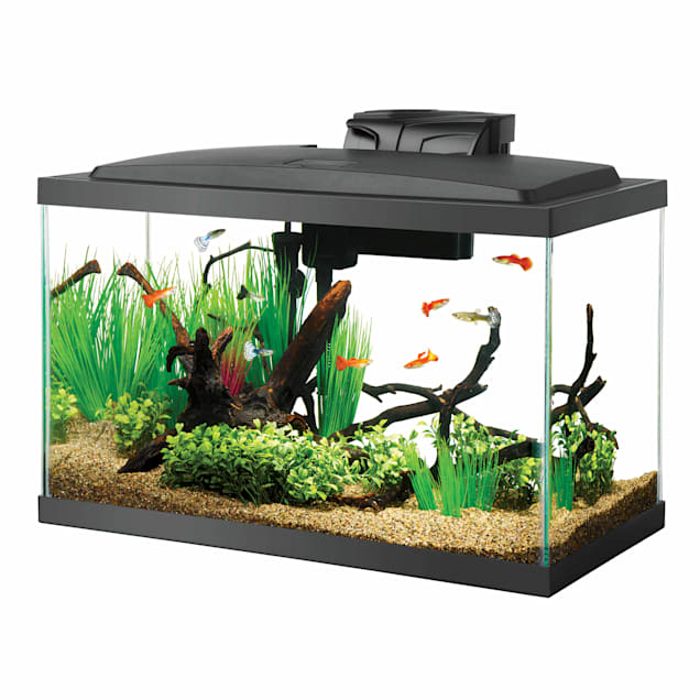 Aqueon 10 Gal LED Aquarium Kit - Carousel image #1