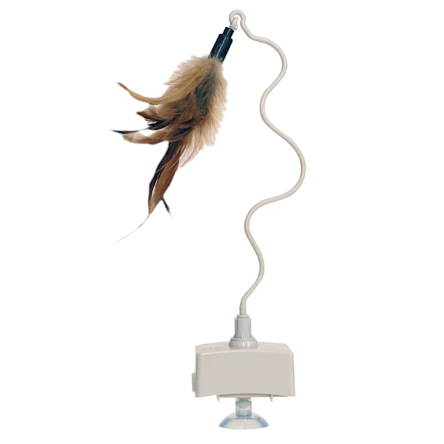 Innovation Pet Kitty Connection Flying Feather with Singing Bird Ball Cat Toy - Carousel image #1