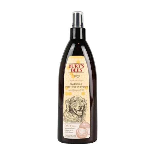 Burt's Bees Care Plus+  Hydrating Waterless Coconut Oil Dog Shampoo, 12 fl. oz. - Carousel image #1