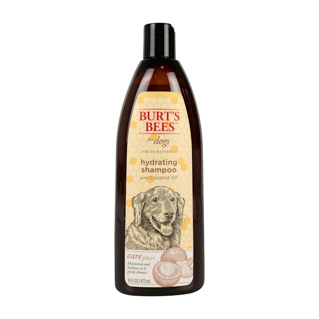 Burt's Bees Care Plus+  Hydrating Coconut Oil Dog Shampoo, 16 fl. oz. - Carousel image #1