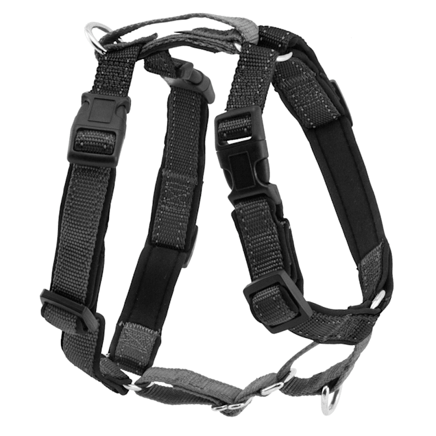PetSafe 3 in 1 Harness, Extra Small, Black - Carousel image #1