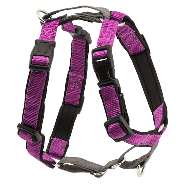 PetSafe 3 in 1 Harness, Small, Plum - Carousel image #1