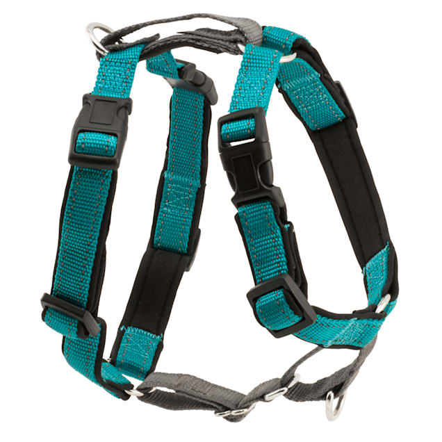 PetSafe 3 in 1 Harness, Extra Small, Teal - Carousel image #1