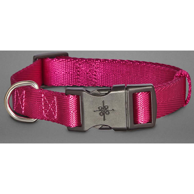 Good2Go Adjustable Berry Dog Collar, Medium - Carousel image #1
