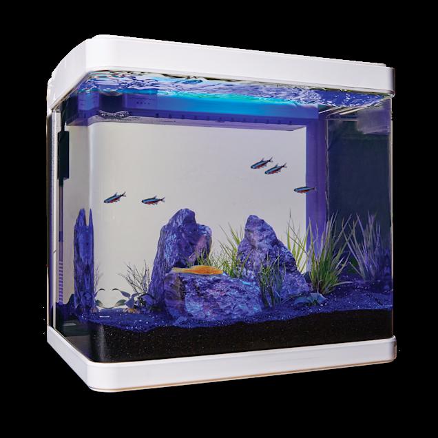 Imagitarium Freshwater Cube Aquarium Kit, 5.2 GAL - Carousel image #1
