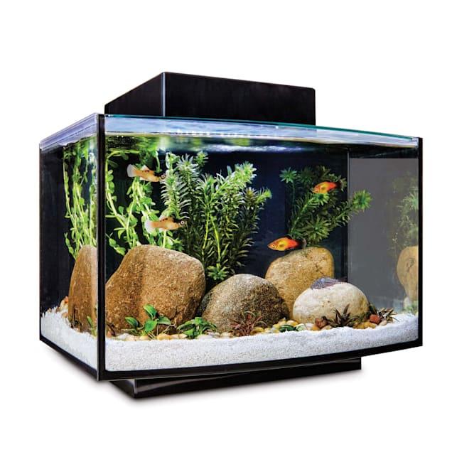 Imagitarium Platform Freshwater Aquarium Kit, 6.6 GAL - Carousel image #1