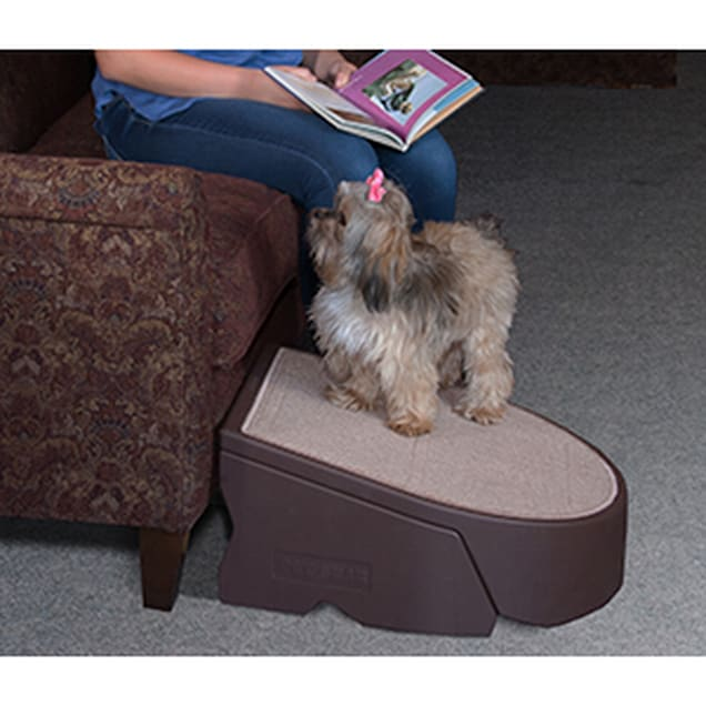 Pet Gear Easy Step I in Chocolate - Carousel image #1