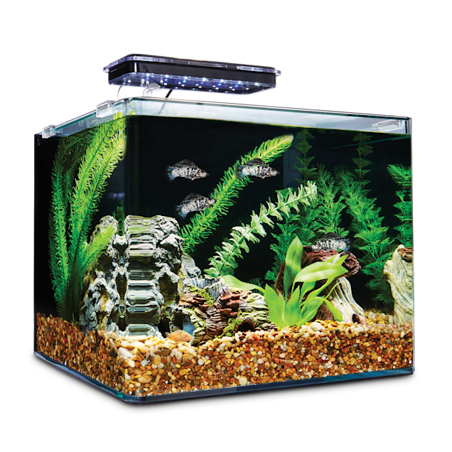 Imagitarium Frameless Freshwater Aquarium Kit, 6.8 GAL - Carousel image #1