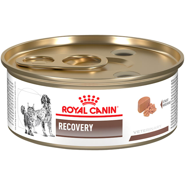 Royal Canin Veterinary Diet Recovery Wet Dog Food, 5.8 oz., Case of 24 - Carousel image #1