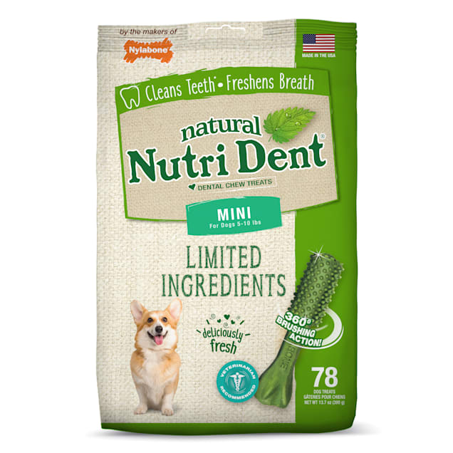 Nylabone Nutri Dent Limited Ingredients Mini Fresh Breath Dental Chews, 13.7 oz., Pack of 78 - Carousel image #1