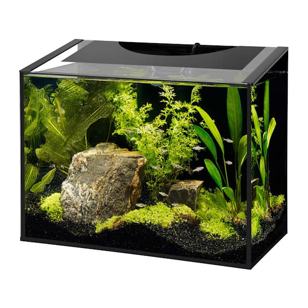 Savic Nobby goldy-aquarium 10 L Beeztees 850903