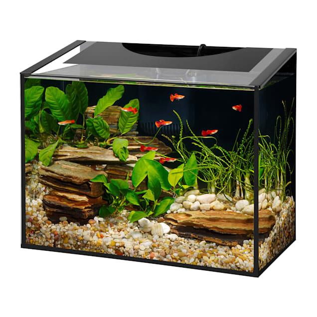 Aqueon Ascent Frameless LED Aquarium Kit, 10 Gallon - Carousel image #1