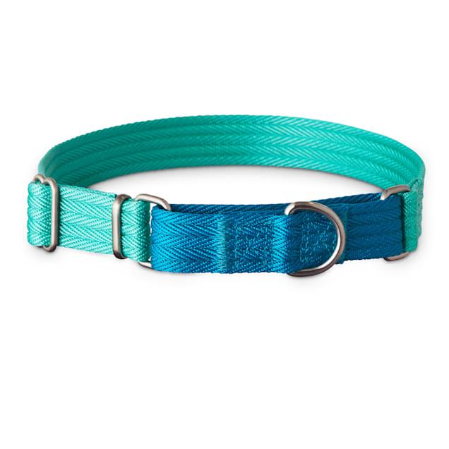 Good2Go Teal and Blue Two Tone Martingale Dog Collar, Medium - Carousel image #1