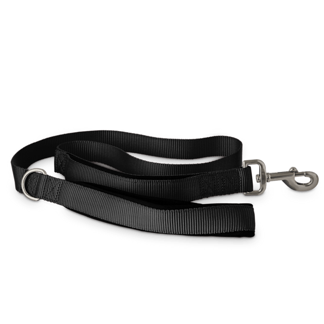 Good2Go Black 2-in-1 Dog Leash, 4 ft. - Carousel image #1