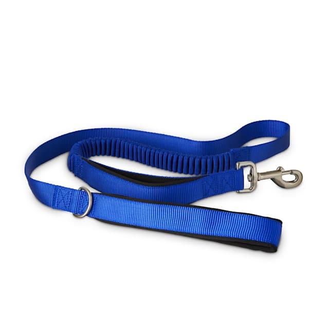 Good2Go Blue Shock Absorbing Dog Leash, 5 ft. - Carousel image #1