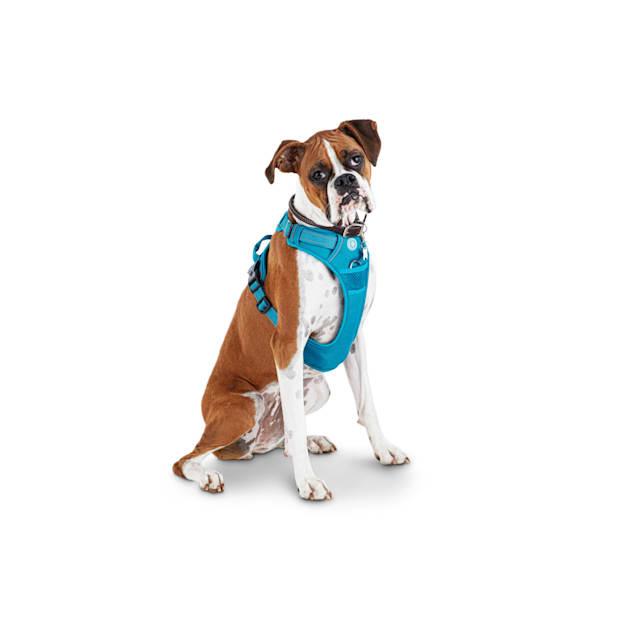 Good2Go Blue Front Walking Dog Harness, Large - Carousel image #1