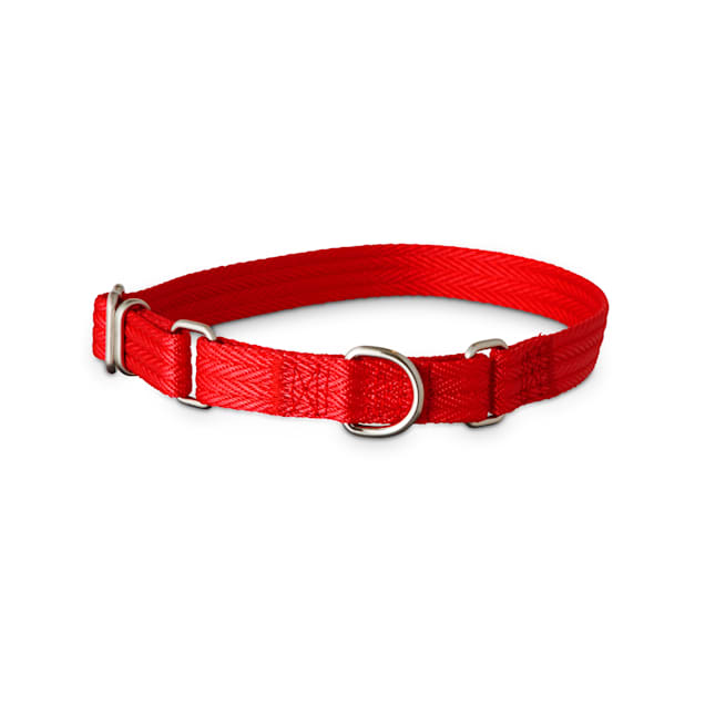 Good2Go Red Martingale Dog Collar, Small - Carousel image #1