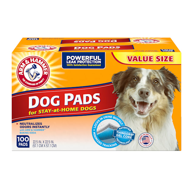 Arm & Hammer Medium Dog Pads, 100 Count - Carousel image #1
