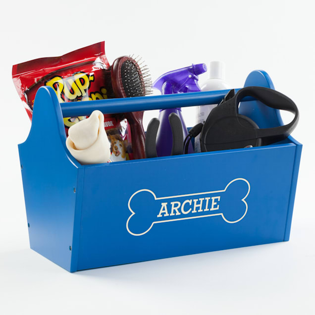 Custom Personalization Solutions Personalized Sweet Dog Storage Caddy Blue - Carousel image #1