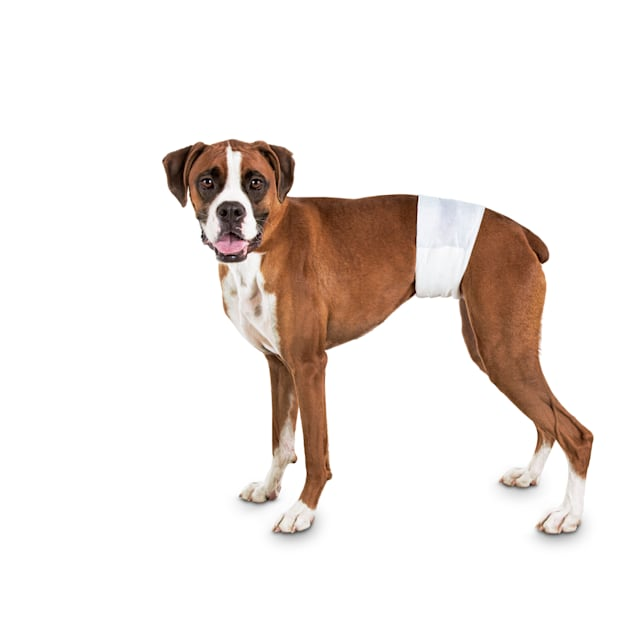 So Phresh Comfort Dry Disposable Male Dog Wraps, Count of 12, Large - Carousel image #1