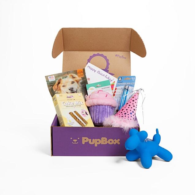 PupBox Birthday Girl Box, Large - Carousel image #1