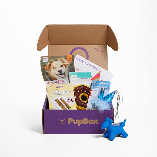 PupBox Birthday Boy Box, Small - Carousel image #1