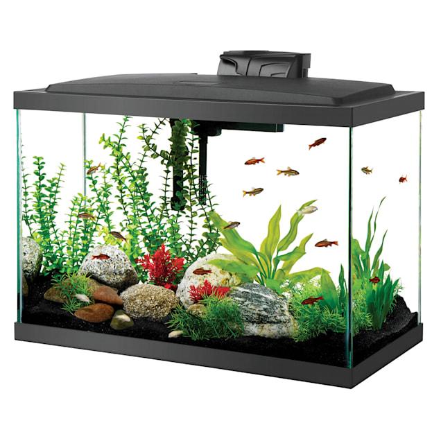 Aqueon LED Aquarium Kit 20 Gallon Tall Black - Carousel image #1