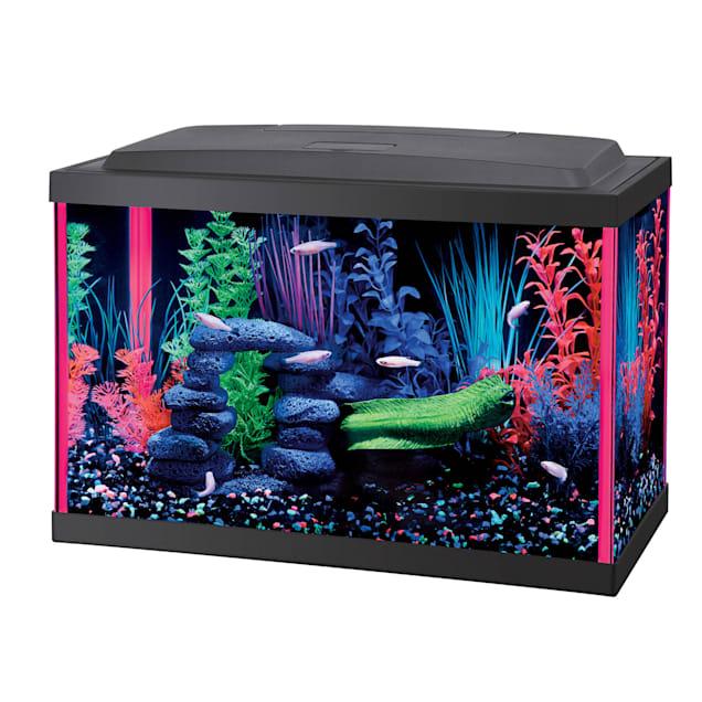 Aqueon LED 5.5 Gallon Pink Aquarium Kit - Carousel image #1