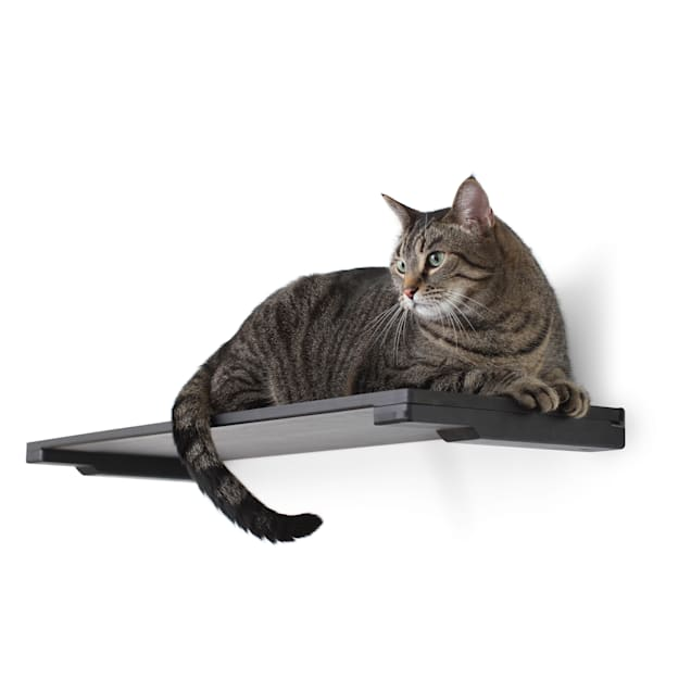 """CatastrophiCreations The Cat Mod 18"""" Solid Wood Shelf for Cats in Onyx, 18.5 IN W X 3 IN H - Carousel image #1"""