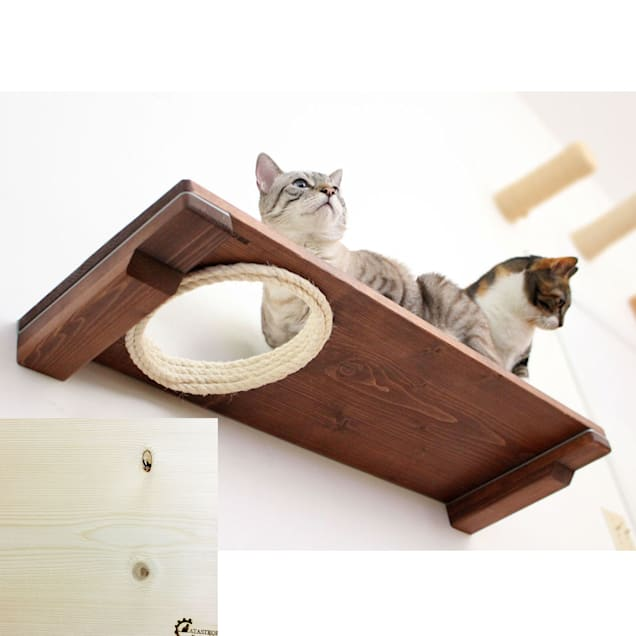 """CatastrophiCreations The Cat Mod 34"""" Escape Hatch Shelf for Cats in Natural, 34 IN W X 3 IN H - Carousel image #1"""