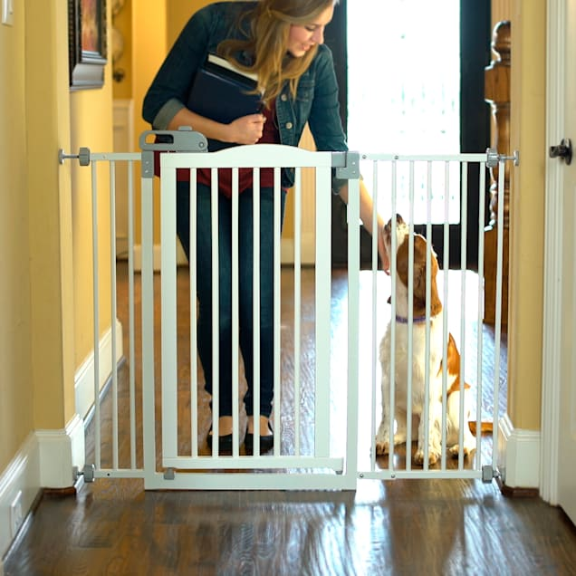 """Richell Tall One-Touch White Pet Gate II Wide, 62.8"""" L  x 38.4"""" H  x 2"""" W - Carousel image #1"""