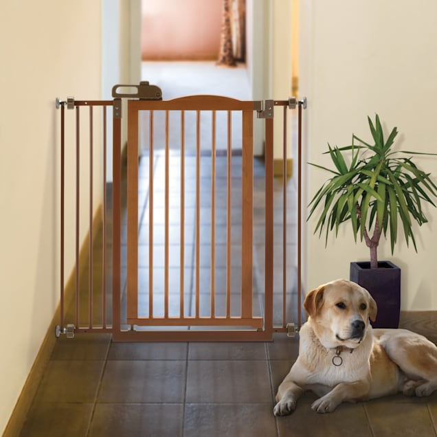 """Richell Tall One-Touch Pet Gate II, 36.4"""" x 38.4"""" x 2"""" - Carousel image #1"""