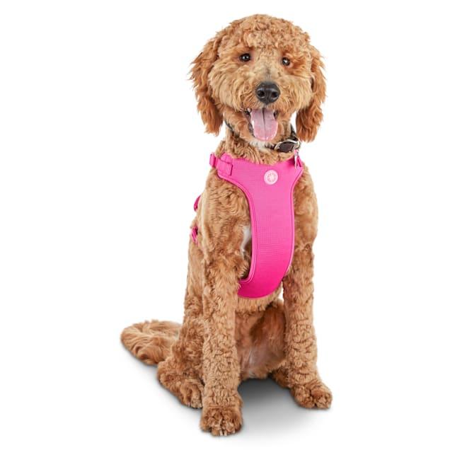 Good2Go Pink Big Dog Harness, XX-Large/XXX-Large - Carousel image #1