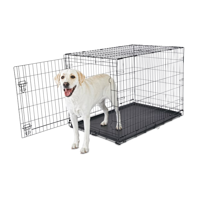 "Animaze 1-Door Folding Dog Crate, 42.5"" L x 28.5"" W x 30.5"" H - Carousel image #1"