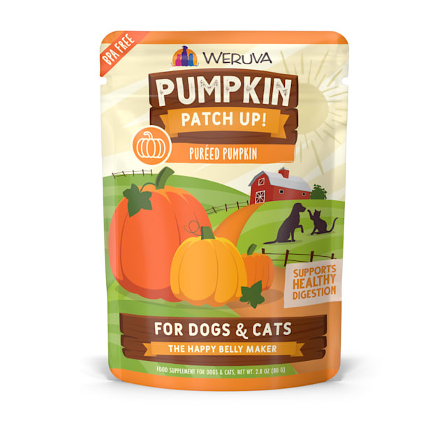 Weruva Pumpkin Patch Up! Pureed Pumpkin Food Supplement for Dogs and Cats, 2.8 oz., Case of 12 - Carousel image #1