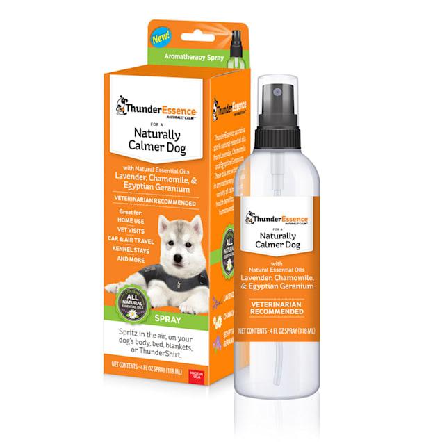 ThunderEssence Natural Oils Calming Spray for Dogs, 4 fl. oz. - Carousel image #1