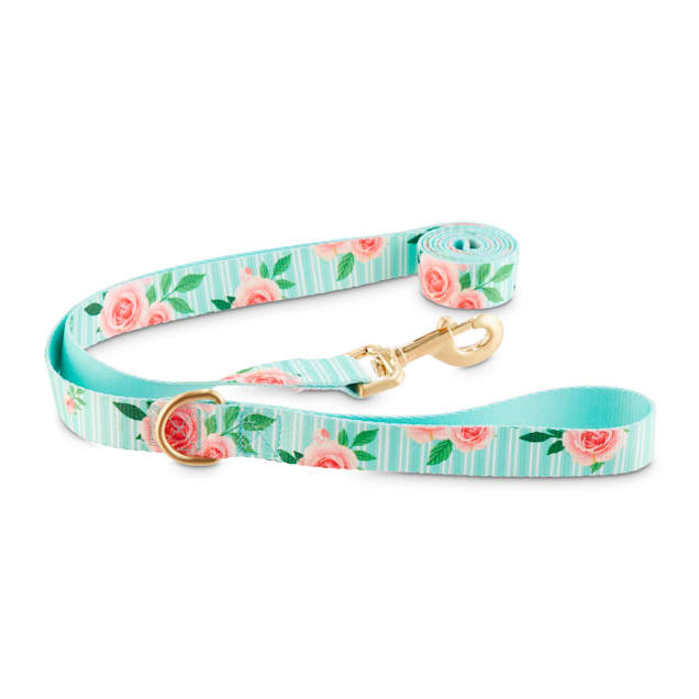 Good2Go Pink Rose Print Dog Leash in Blue, 6 ft. - Carousel image #1
