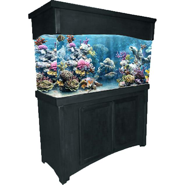 R&J Enterprises 48X13 Black Calypso Birch Cabinet & Canopy Combo - Carousel image #1