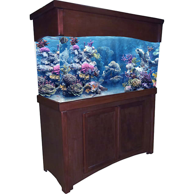 R&J Enterprises 48X13 Cherry Calypso Birch Cabinet & Canopy Combo - Carousel image #1