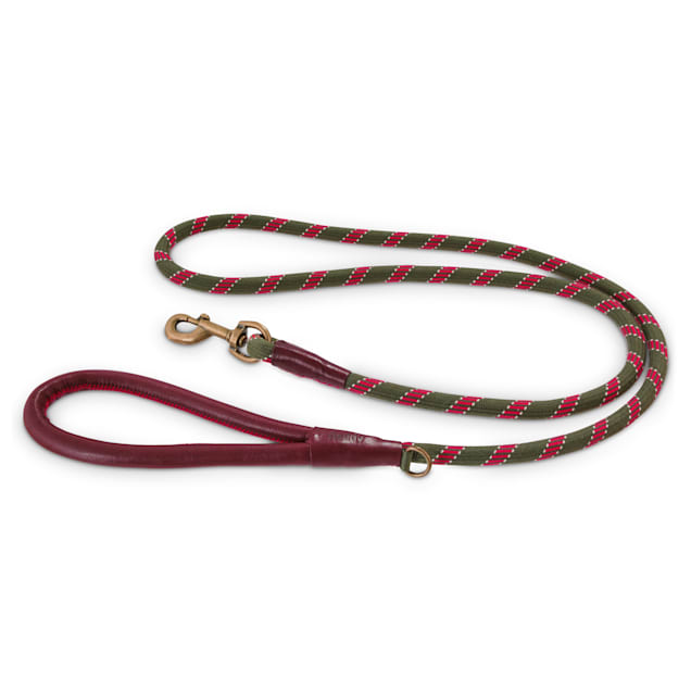 Reddy Olive Rope Dog Leash, 6Ft - Carousel image #1