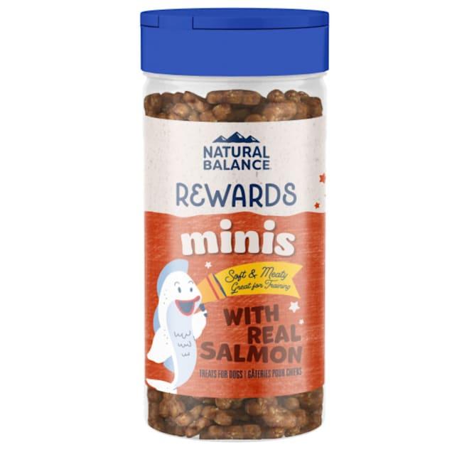 Natural Balance Limited Ingredient Diets Mini Rewards Soft & Chewy Salmon Formula Dog Treats, 5.3 oz. - Carousel image #1