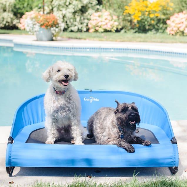 "Gen7Pets Trailblazer Blue Cool-Air Cot for Dogs, 26"" L X 37.5"" W X 7"" H - Carousel image #1"