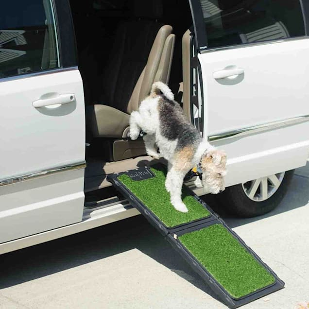 """Gen7Pets Outdoor Natural Mini Ramp for Dogs, 42"""" L X 16"""" W X 1.5"""" H - Carousel image #1"""