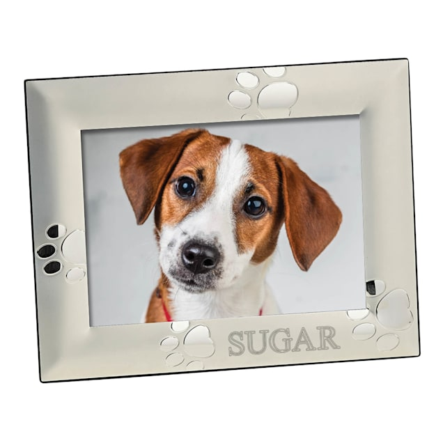 Custom Personalization Solutions Personalized Silver Dog Frame - Carousel image #1