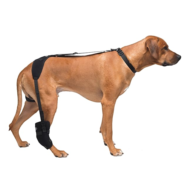Caldera Hot & Cold Therapy Wrap with Gel for Dog Tarsals, Large - Carousel image #1