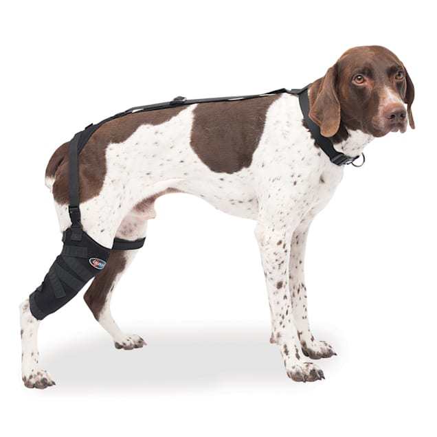 Caldera Hot & Cold Therapy Wrap with Gel for Dog Tall Stifles, Medium - Carousel image #1