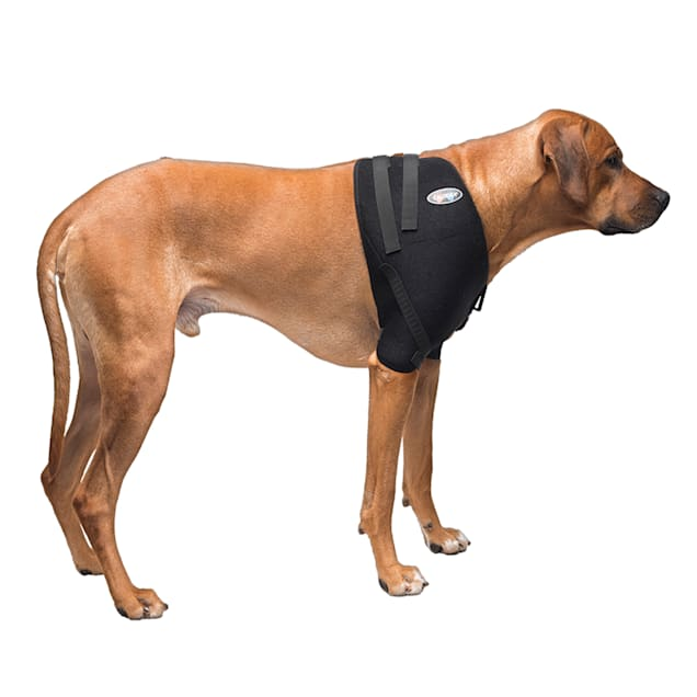 Caldera Hot & Cold Therapy Wrap with Gel for Dog Shoulders, Large - Carousel image #1