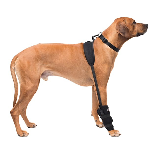 Caldera Hot & Cold Therapy Wrap with Gel for Dog Carpals, Large - Carousel image #1