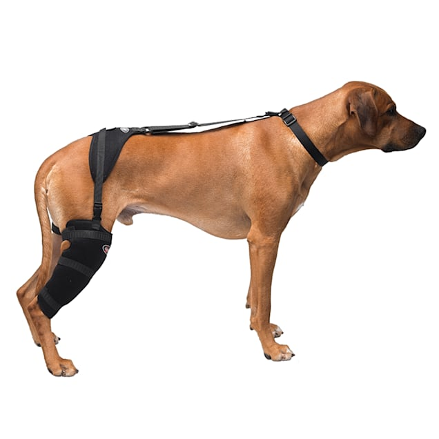 Caldera Hot & Cold Therapy Wrap with Gel for Dog Stifles, Large - Carousel image #1
